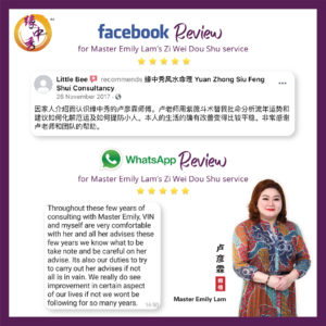 Review Zi Wei Dou Shu Astrology Service by Master Emily Lam