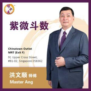 Zi Wei Dou Shu Astrology 紫微斗数 by Master Ang (Yuan Zhong Siu)