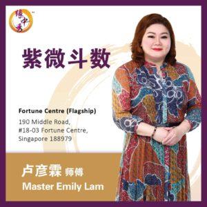 Zi Wei Dou Shu Astrology 紫微斗数 by Master Emily (Yuan Zhong Siu)